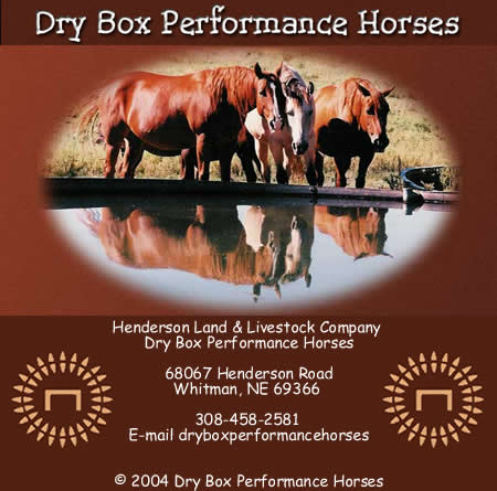 Click here to go to Dry Box Performance Horses web site